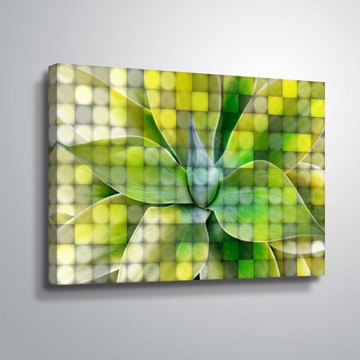 'Spring Succulent Symphony 7' Graphic Art Print Format: Wrapped Canvas, Size: 12