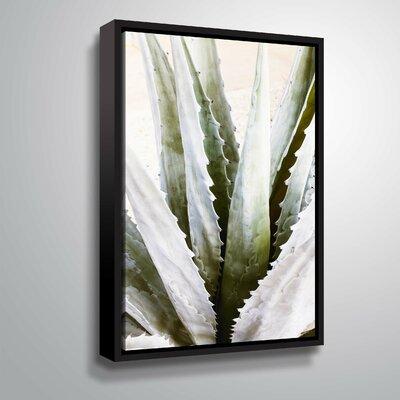 'Succulent Symphony 3' Photographic Print Format: Black Framed, Size: 12