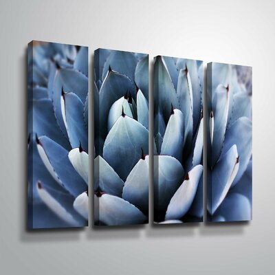 'Summer Succulent Symphony 13' Rectangle Photographic Print Multi-Piece Image on Canvas Format: Wrapped Canvas, Size: 24