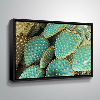 'Sunny Cactus 2' Photographic Print Format: Black Framed, Size: 14