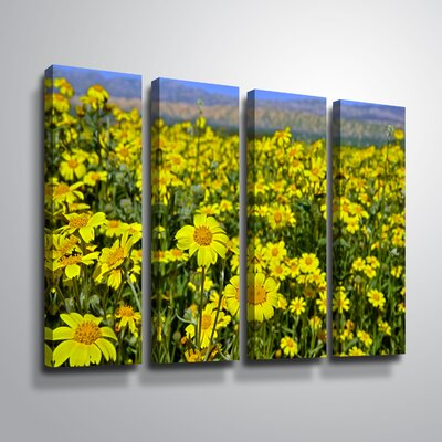 "'Carrizo Plain Daisies' Photographic Print Multi-Piece Image on Canvas Size: 24"" H x 32"" W, Format: Wrapped Canvas 216011AFB48D47468C19249959FADFD7"
