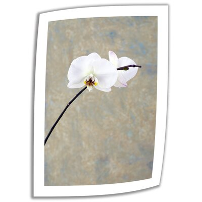 Orchid Blossom' by Elena Ray Vintage Advertisement on Rolled Canvas ERay-022-24x16