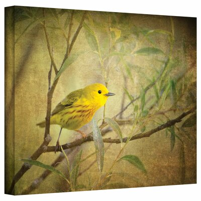 'Bird on Branch' Graphic Art on Canvas Size: 14