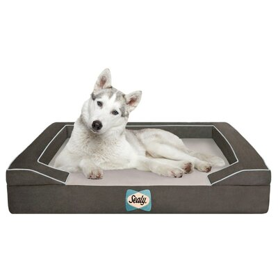 "Sealy Bolster Dog Bed - Color: Max-Gray, Size: Large (42"" L x 32"" W)"