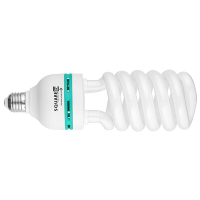 65W (5400K) Compact Fluorescent Light Bulb (Pack of 4)