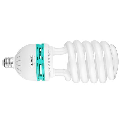 85 W (5500K) Compact Fluorescent Light Bulb (Pack of 4)