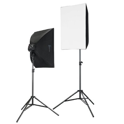 2000 W Photography and Digital Video Continuous Light Kit