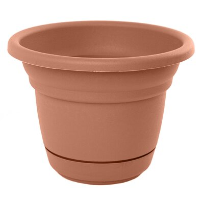 bloem Tahoe Round Pot Planter (Set of 12) - Color: Terra Cotta Size: 5.75