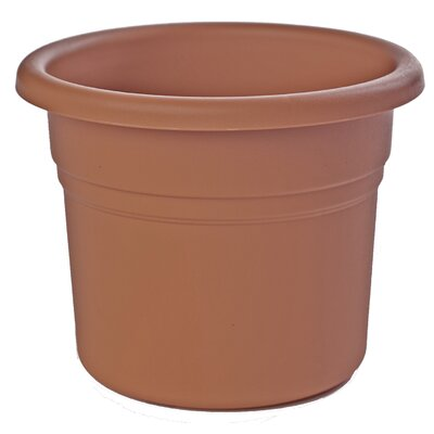 bloem Posy Round Pot Planter (Set of 8) - Color: Terra Cotta