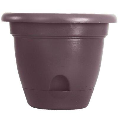 Lucca Self-watering Plastic Pot Planter