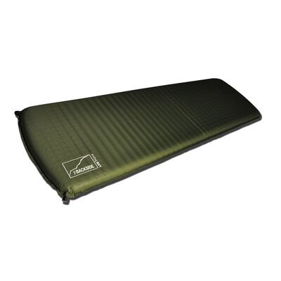 2 Air Mattress Size: 72 H x 20 W x 2 D