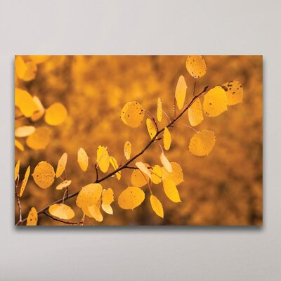 'Yellow Leaves' Photographic Print Format: Metal