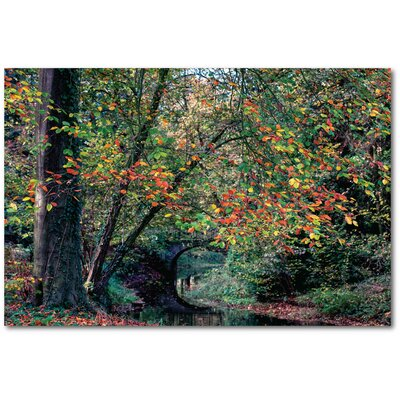 'Beech and Bridge' Photographic Print on Wrapped Canvas
