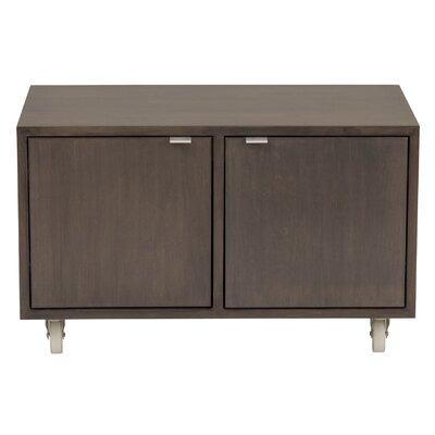 Media 2 Door Storage Cabinet Wood Veneer: Painted Eco-MDF, Finish: Grey