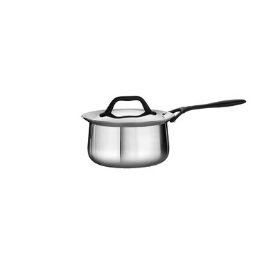 Tramontina Limited Edition Butterfly Stainless Steel Saucepan with Lid - Size: 2 Quarts at Sears.com