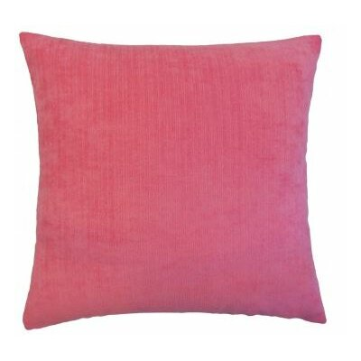 Rafiya Outdoor Throw Pillow Size: 18 x 18