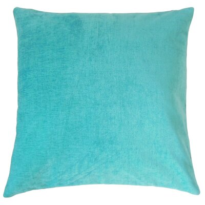 Elior Solid Velvet Throw Pillow Size: 22 x 22