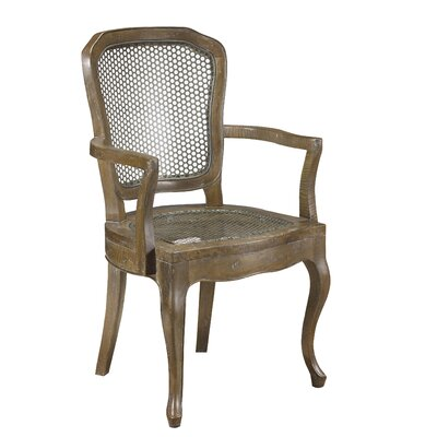 Pyrenees Arm Chair Finish: Taupe Brown