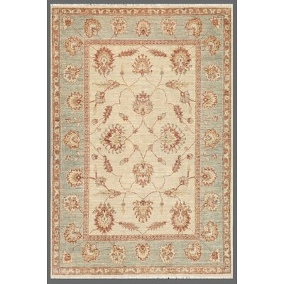 Ferehan Light Blue/Cream Traditional Area Rug
