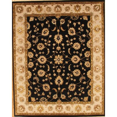 Agra Black/Beige Traditional Persian Area Rug