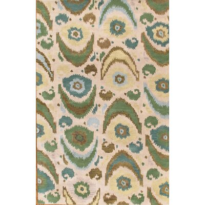 Ikat Hand-Tufted Ivory/Green Area Rug Rug Size: Rectangle 4 x 6