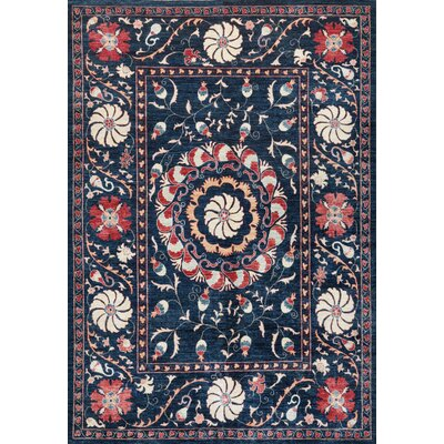 Suzani Hand-Knotted Multi-colored Area Rug