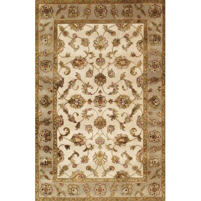 Agra Hand-Knotted Area Rug Rug Size: 41 x 63