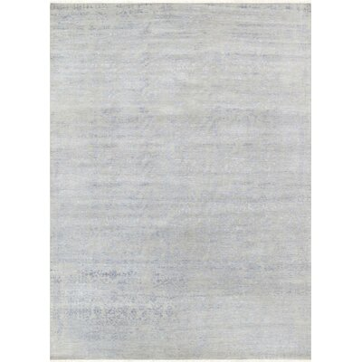 Hand-Knotted Gray Area Rug Rug Size: 66 x 910