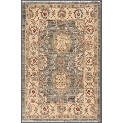 Ferehan Hand-Knotted Ivory/Gray Area Rug