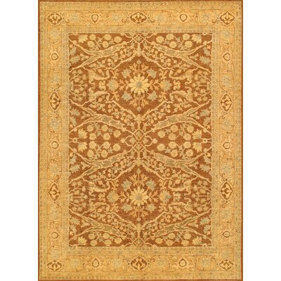 Ferehan Hand-Knotted Brown/Gold Area Rug