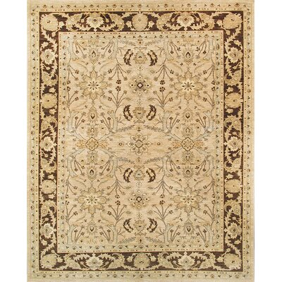 Ferehan Hand-Knotted Beige Area Rug
