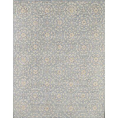 Transitiona Hand-Knotted Light Blue Area Rug