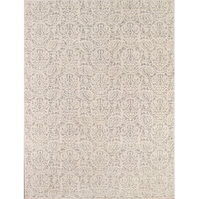 Transitiona Hand-Knotted Light Gray Area Rug