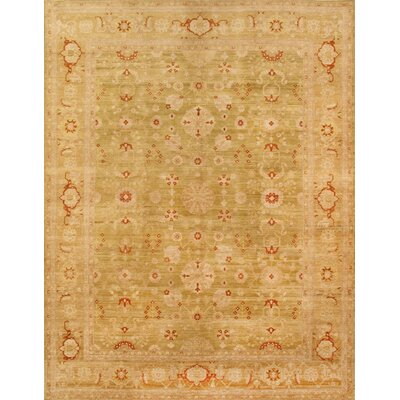 Sultanabad Hand-Knotted Light Green Area Rug