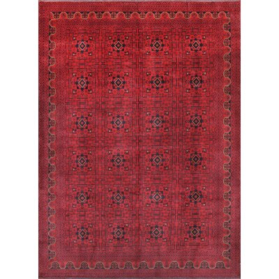 Yamoud Hand-Knotted Burgundy Area Rug