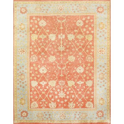 Oushak Hand-Knotted Coral/Light Blue Area Rug