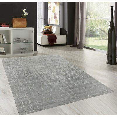 Transitional Hand-Knotted Silver Area Rug Rug Size: 6 x 9