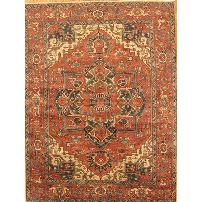 Serapi Hand-Knotted Rust Area Rug