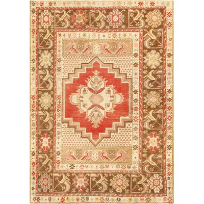 Oushak Hand-Knotted Coral Area Rug