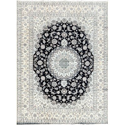 Nain Hand-Knotted Ivory / Navy Area Rug