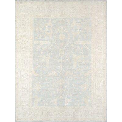 Oushak Hand-Knotted Light Blue/Ivory Area Rug