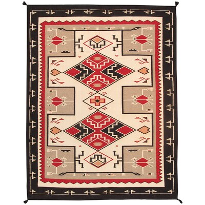 Navajo Hand-Knotted Beige/Brown Area Rug