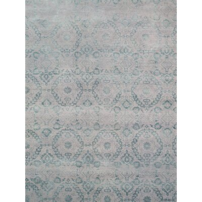 Transitiona Hand-Knotted Silver Area Rug
