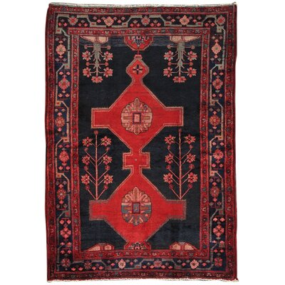 Hamadan Vintage Lambs Wool Hand-Knotted Black/Red Area Rug