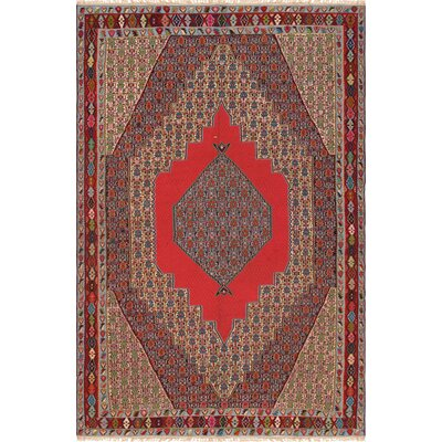 Senneh Vintage Wool Hand-Woven Red/Brown/Gray Area Rug