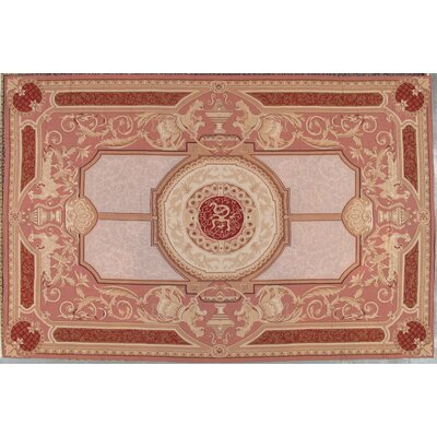 Needle Point Aubusson Hand-Knotted Red Area Rug
