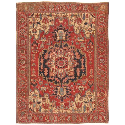 Serapi Antique Hand Knotted Wool Red Area Rug
