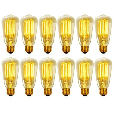 40W Vintage Edison S60 Squirrel Cage Incandescent Filament Light Bulb