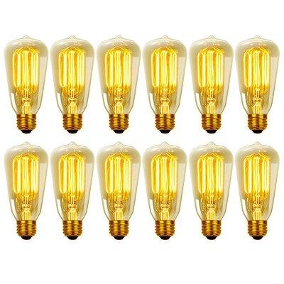 60W E26 Medium Incandescent Light Bulb