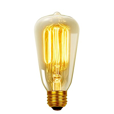 Vintage Edison (2700K) S60 Squirrel Cage Incandescent Filament Light Bulb Wattage: 40